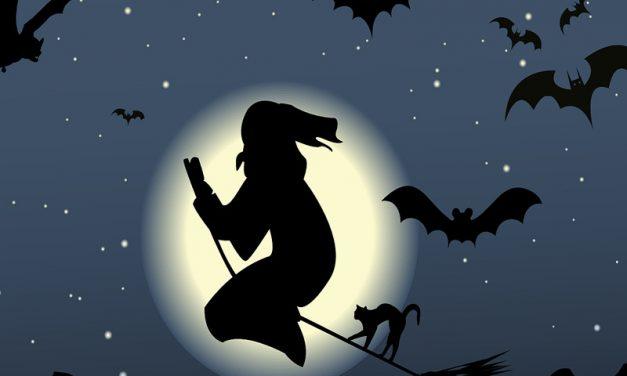 Bats in Popular Culture